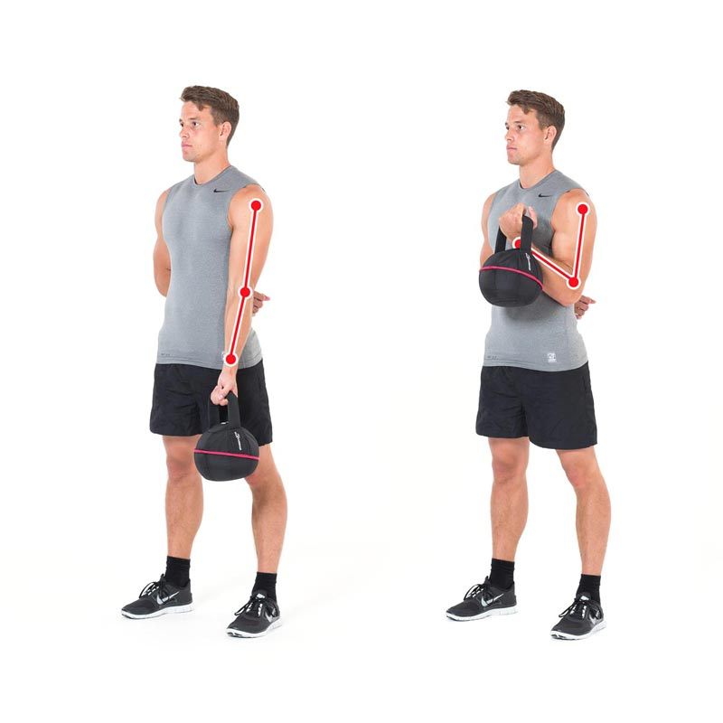 Bottom up hammer curl met kettlebell – biceps