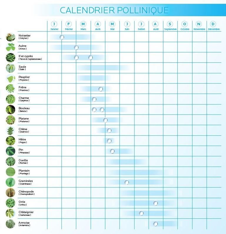 Toleriane calendrier du pollen